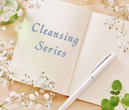 Antrosteroids Cleansing Series